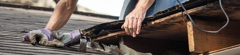 Roof Repair Residential Shingle Roofing Lakeland Fl