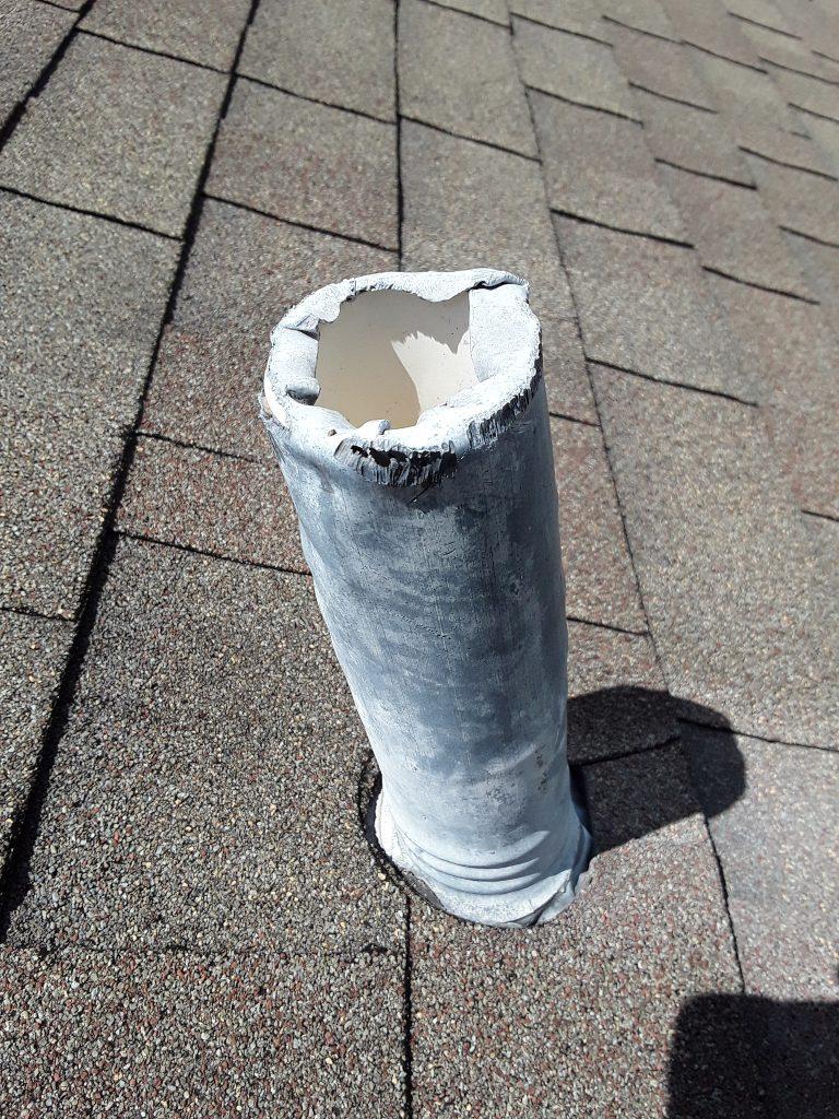 K.L. Smith Squirrel damage